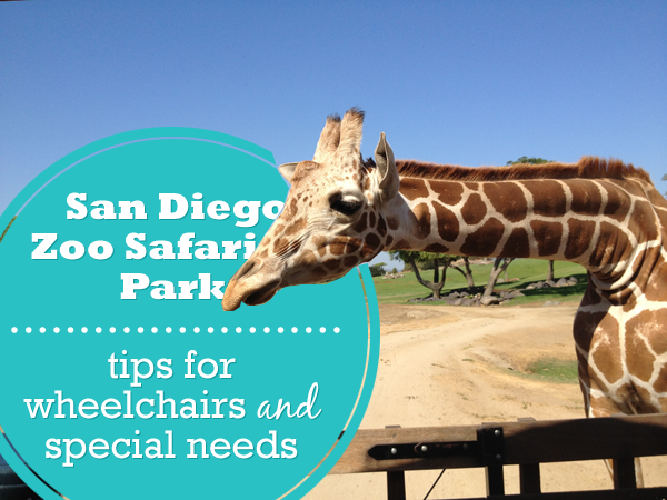 san diego zoo safari park special needs and wheelchair accessibility