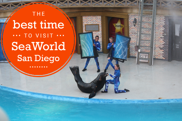 the best time to visit seaworld san diego