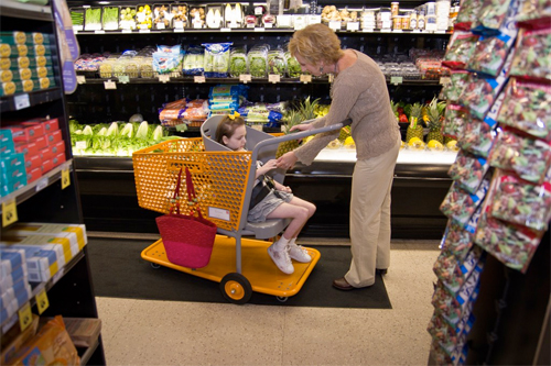 Caroline's Cart grocery cart for special needs
