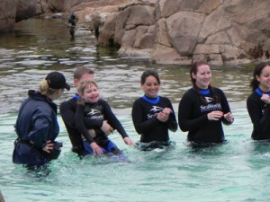 SeaWorld San Diego with special needs kids