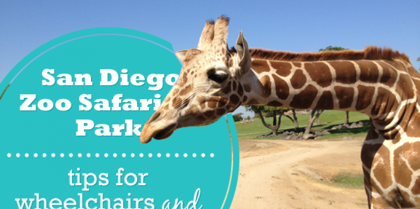 San Diego Zoo Safari Park with Special Needs