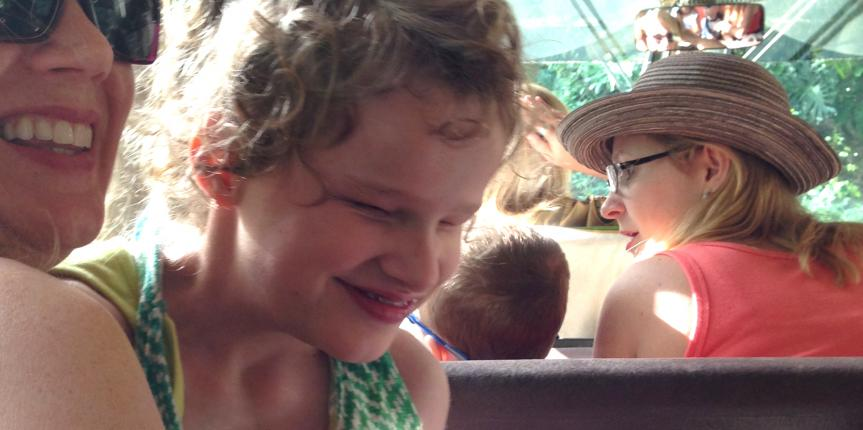 Special Needs and Wheelchair Accessibility on the Animal Kingdom Safari Ride