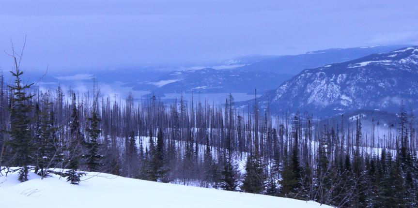Family-Friendly Snowmobiling at Sun Peaks Resort