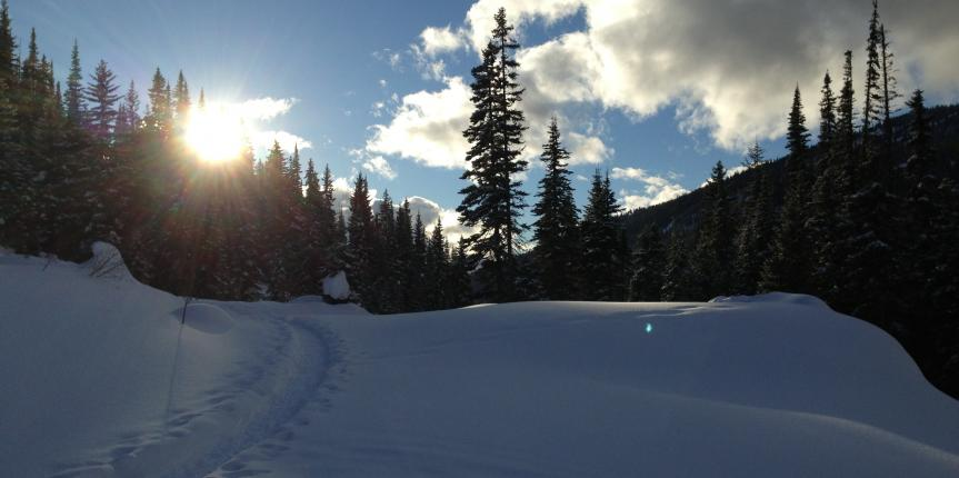 Snowshoeing at Sun Peaks Resort